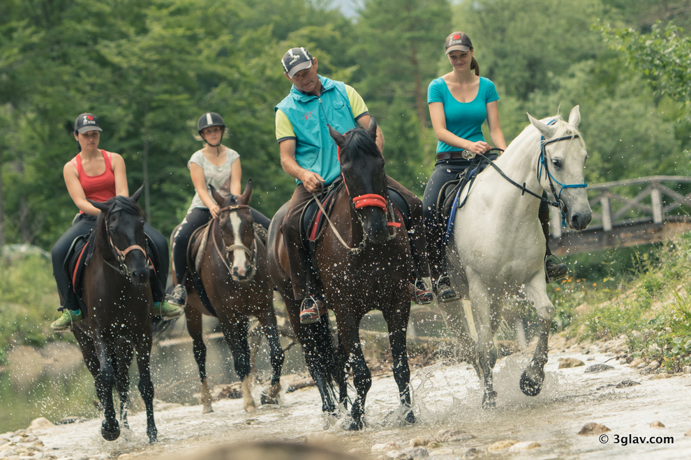 Horseback riding tour Bled Sloveni