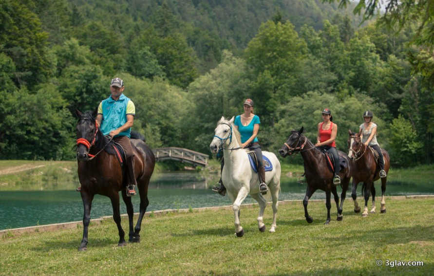 Horse riding tour Slovenia